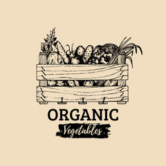 Vector organic vegetables logo. Farm eco products illustration. Hand sketched wooden box with greens.