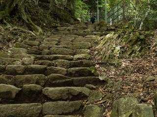 丹沢大山国定公園「大山の登山風景」