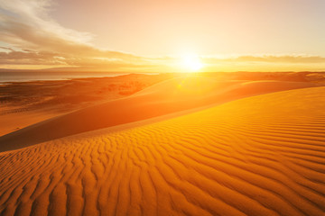 Picturesque desert landscape with a golden sunset over the dunes