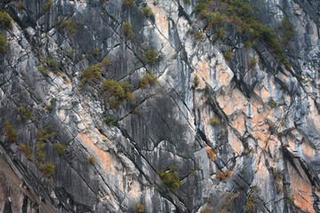 Rock Background Closeup