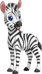 Cute funny zebra