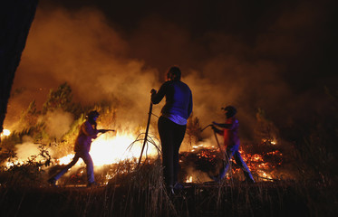 A resident watches as firefighters try to extinguish a forest fire in Tondela, near Viseu