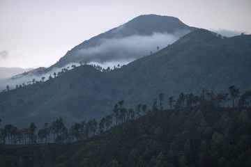 Three layers of mountains in the mist, Ella, Sri Lanka