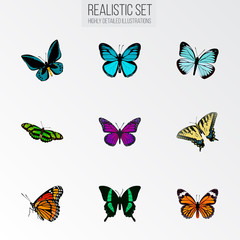 Realistic Monarch, Sky Animal, Green Peacock And Other Vector Elements. Set Of Beauty Realistic Symbols Also Includes Tropical, Butterfly, Monarch Objects.