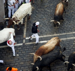 A runner stands in between Garcigrande fighting bulls and steers during the seventh running of the bulls of the San Fermin festival in Pamplona