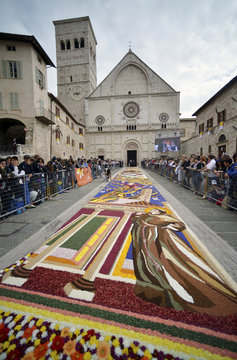 Giant drawing made with flowers is seen outside the San Rufino cathedral during Pope Francis' pastoral visit in Assisi