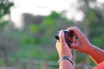 hand holding camera photograph in nature background