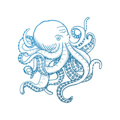 Octopus. Vector vintage illustrations. Isolated on white background.