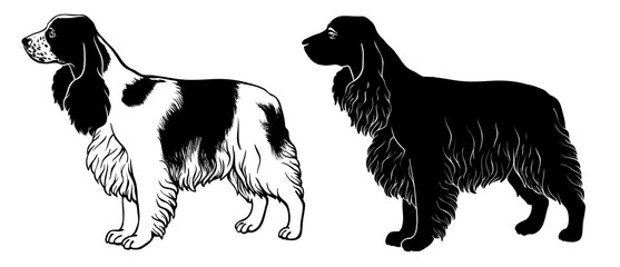 Cocker Spaniel set 2 - outline and silhouette vector
