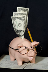 Piggy Bank Bookkeeper Finding Savings