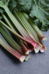 Rhubarb Stalks 3