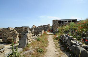 La Maison au Trident du quartier du théâtre de Délos en Grèce