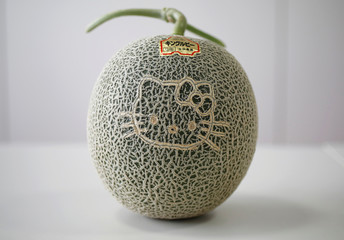 Hello Kitty face grown on a melon, which is produced in Hokkaido, is pictured at the Sanrio Co headquarters in Tokyo