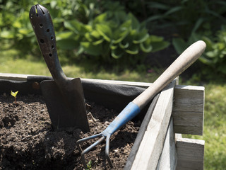 Vegetable elevated wooden beds. Gardening equipment for home gardeners. Compost soil and seed setting. Sunny day. Agriculture equipment. Small trowel and rakes.