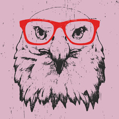 Portrait of Eagle with glasses. Hand drawn illustration.T-shirt design. Vector