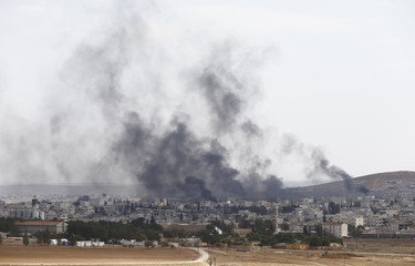 Smoke rises over Syrian town of Kobani, as seen from the Mursitpinar crossing on the Turkish-Syrian border