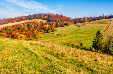 mountain rural area in late autumn
