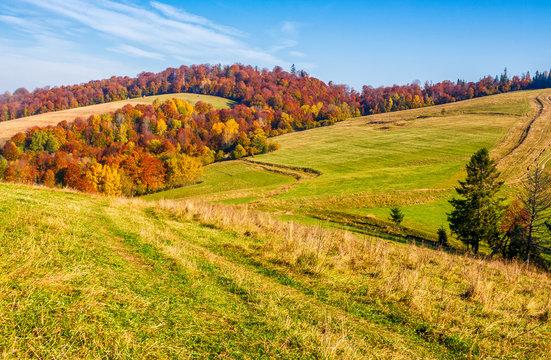 mountain rural area in late autumn