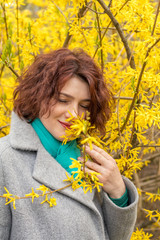 Pretty young red head woman with forsythia blossoms in spring park. Yellow blossoms background.
