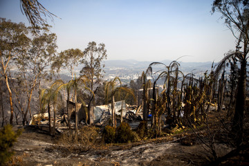 A house that has been burnt down by wildfires is seen on Phoenix Way in San Marcos, California