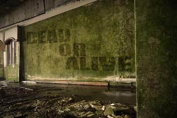 text dead or alive on the dirty wall in an abandoned ruined house