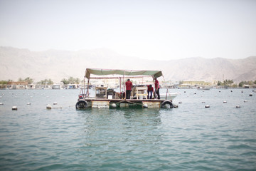 Workers prepare oysters at RAK's oyster farm off the coast of Ras Al Khaimah, one of the seven emirates that make up the United Arab Emirates