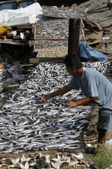 Toto Tiongco, a fishmonger, dries his daily catch of saltwater catfish locally known as Kanduli before selling the fish at a wet market in Manila