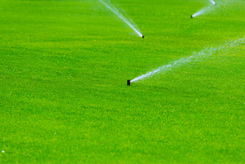 Lawn sprinkler spaying water over green grass. Irrigation system
