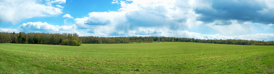 Panorama of summer landscape