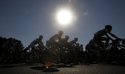 Cyclists compete in the final stage of the Tour of Qatar Men's cycling race in Doha