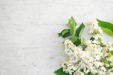Branch of beautiful lilac flowers on light wooden background