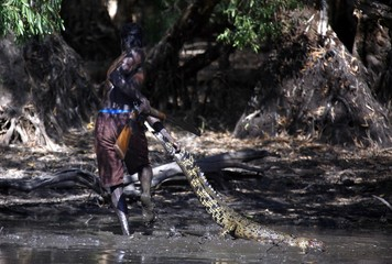 Australian Aboriginal hunter Roy Gaykamangu of the Yolngu people drags a crocodile he has just shot dead out of a billabong near the 'out station' of Yathalamarra, located on the outksirts of the community of Ramingining in East Arnhem Land