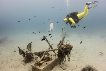 Diver swims next to a fishing boat anchor from the last century in Historical Underwater Park in Mali Losinj