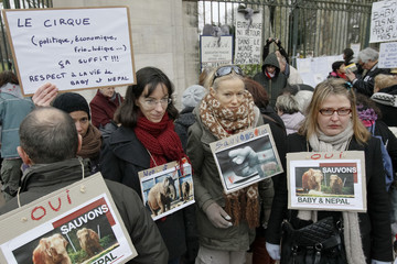 People attend a protest march at the Tete d'Or zoo in Lyon against court euthanasia ruling against elephants