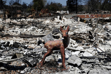 A deer statue stands amid the remains of a home in a neighborhood destroyed by the Clayton Fire at Lower Lake in California