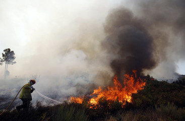 A firefighter tries to extinguish a forest fire near Mengualde