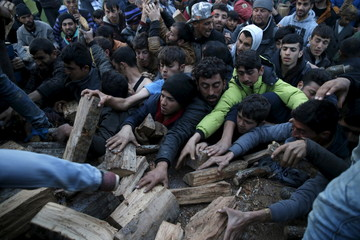 Migrants who are waiting to cross the Greek-Macedonian border, scuffle to get a shipment of firewood near the village of Idomeni