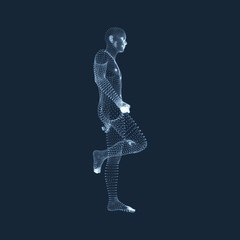 Man Stands on his Feet. 3D Model of Man. Human Body Model. View of Human Body. Vector Graphics Composed of Particles.