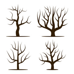 Four trees without leaves. Vector illustration isolated on a white background