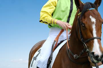 cheval course jockey tiercé hippodrome gain jouer gagner dada parier pari jeu argent compétition miser