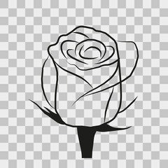 vector image roses on a transparent background