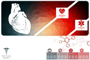 2d illustration  Anatomy of Human Heart