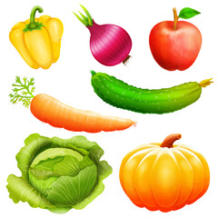 Set  illustration of vegetables collection .Icons