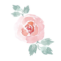 Watercolor handpainted rose clipart. Watercolor flowers. Beautiful floral illustration