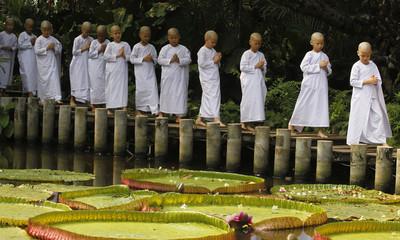 Novice Thai nuns walk along a pond at the Sathira-Dhammasathan Buddhist meditation centre in Bangkok