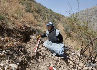 A member of a demining organisation prods the earth while searching for unexploded ordnance in Salang district of Parwan province