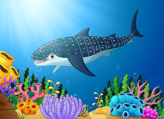 Cartoon whale shark in the sea