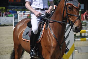 Mit dem Pferd auf dem Tunierplatz beim Springtunier