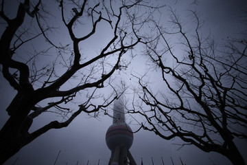 The Oriental Pearl Tower skyscraper is seen during rain at the financial district of Pudong in Shanghai