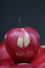 An apple marked with the logo of the World Climate Change Conference 2015 is seen in this illustration picture at Laquenexy Fruit Gardens